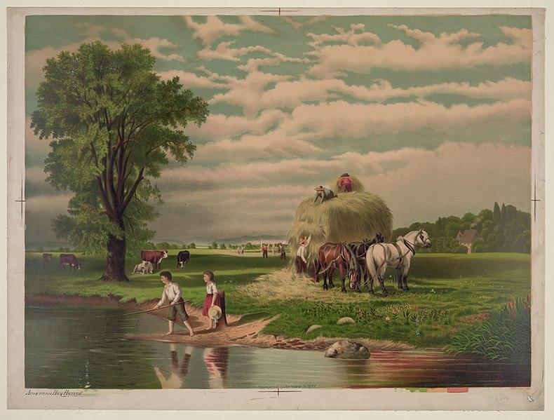 File:American hay harvest LCCN2004669658.jpg
