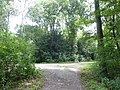 Amsterdamse Bos (5).jpg