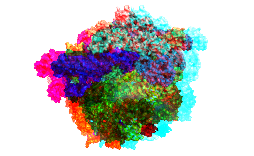 Anaglyph ribosome
