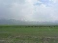 Anatolische Hochebene westlich von Erzurum (40381780051).jpg