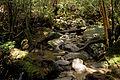 Anbo River 05.jpg