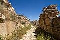 Ancient Jerash - panoramio (7).jpg