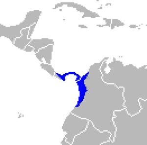 Panamanian night monkey - Image: Aotus zonalis range map cropped