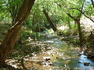 Apiesrivier-boloop, Groenkloof Natuurreservaat
