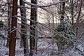 April Snow (4) (26338274075).jpg