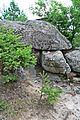 Arc 1 Dolno Dryanovo.jpg