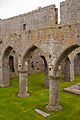 Ardfert Friary Nave Arches 2012 09 11.jpg
