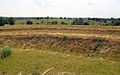 Art earthwork landscape sculpture Woodland Trust Theydon Bois Essex 07.JPG