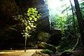 Ash Cave (29764816394).jpg