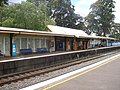 Asquith railway station main area platform 1.jpg
