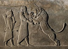 Battle Of Shahriar And Lion Wikipedia