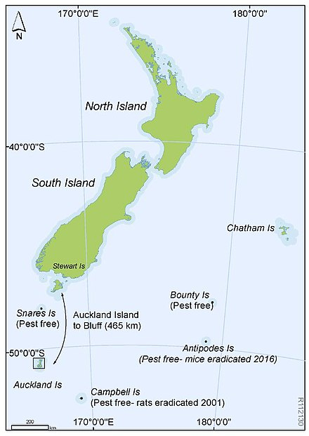 Location map, for Auckland Islands showing position from New Zealand.