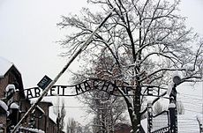 Auschwitz-Work Set Free.jpg