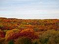 Autumn in Cross Plains Township - panoramio.jpg