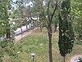 Aviglianopz0042.JPG