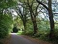 Avishayes Road - geograph.org.uk - 244967.jpg