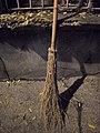 Balais en bambou - DIY - bamboo brooms - Alain Van den Hende - licence CC40 - SAM 3919.jpg