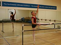 how to get into a vocational ballet school