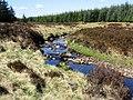 Ballinloan Burn - geograph.org.uk - 429882.jpg