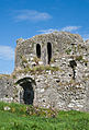 Ballybeg Priory St. Thomas Doorway to Cloister 2012 09 08.jpg