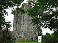 Ballybur Castle - geograph.org.uk - 558376.jpg