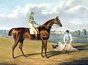 Barefoot (horse) - Barefoot, Winner of the St Leger, engraving by Thomas Sutherland from a painting by John Frederick Herring, Sr.