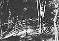 Bateria Cyplowa kolejka 02.jpg