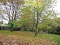 Beaumont Park, Lockwood - geograph.org.uk - 76596.jpg