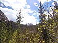 Beautiful Colorado.JPG