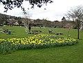 Bellwood Riverside Park, Easter Sunday - geograph.org.uk - 734924.jpg