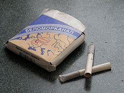 табачное изделие в виде