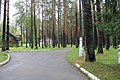 Berdsk, Novosibirsk Oblast, Russia - panoramio (11).jpg