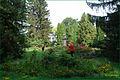 Berezovorudskyi Park 1.jpg