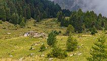 Bergtocht van Cogolo di Peio naar M.ga Levi in het Nationaal park Stelvio (Italië) 23.jpg