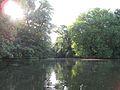 Berlin Tiergarten Neuer See 1.jpg