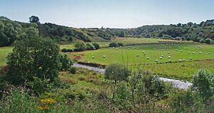Bervie Water - Bervie Water south of Allardice Castle