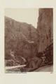 Bild från familjen von Hallwyls resa genom Algeriet och Tunisien, 1889-1890 - Hallwylska museet - 92015.tif