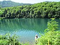 Biogradsko jezero (3).JPG