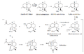 Biosíntesis de la artemisina.png