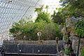 Biosphere 2015 01 18 0045.jpg