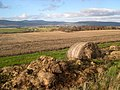 Black Isle farmland - geograph.org.uk - 352545.jpg