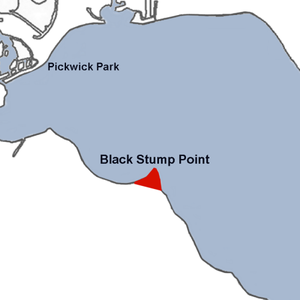 Lake Wawasee - Black Stump Point in red.