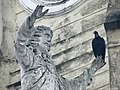 Black Vulture on statue of Jesus, Casco Viejo (Old City), Panama City, Panama (11427360396).jpg