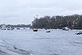 Boat Race 2014 - Main Race (96).jpg