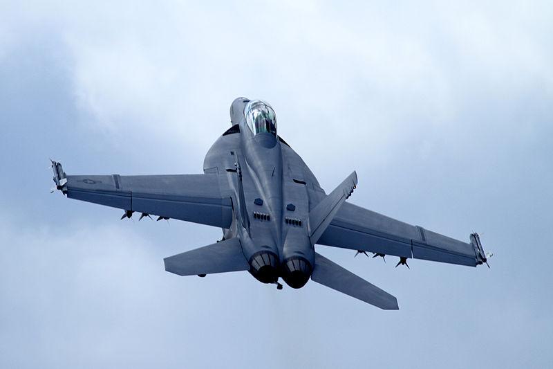 Boeing F-18 Super Hornet 3 (4827292542).jpg