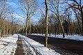 Bois de Boulogne neige 6.jpg