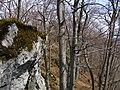 Bokšovské skaly - panoramio (1).jpg