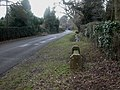 Boldre, bench - geograph.org.uk - 1715413.jpg