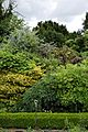 Border shrubs and trees in Walled Garden of Goodnestone Park Kent England.jpg