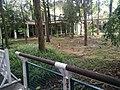 Botanical Garden in Putrajaya, Malaysia 46.jpg